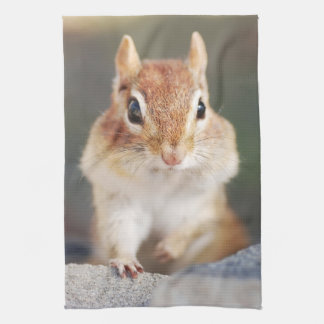 Little Chipmunk Portrait Kitchen Towel