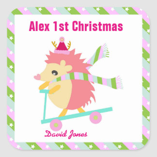 Little Christmas Hedhog Square Sticker