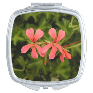 little compact mirror