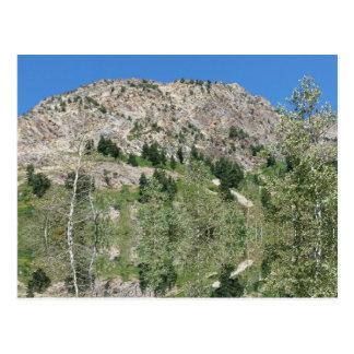 Little Cottonwood Canyon Utah 09072015 Postcard