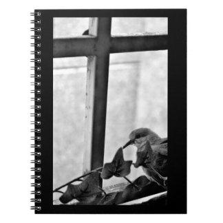 Little Dove Notebook