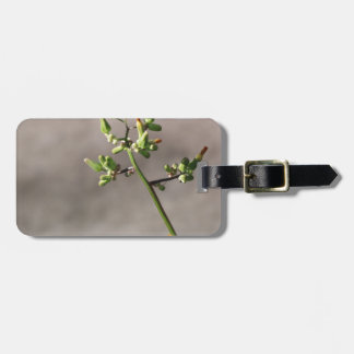 Little Flower Buds Luggage Tag