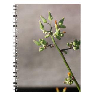 Little Flower Buds Notebooks