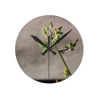 Little Flower Buds Round Clock