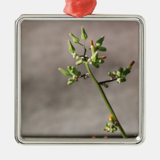 Little Flower Buds Silver-Colored Square Ornament