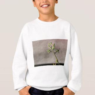 Little Flower Buds Sweatshirt