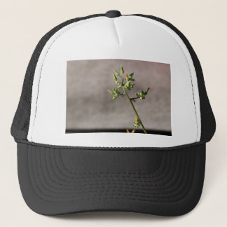 Little Flower Buds Trucker Hat