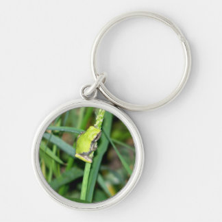 Little Frog Silver-Colored Round Keychain