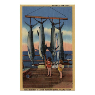 Little Girls Looking at Caught Swordfish Poster