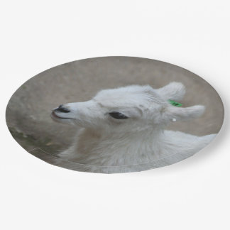 little Goat Paper Plate