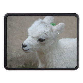 little Goat Trailer Hitch Cover