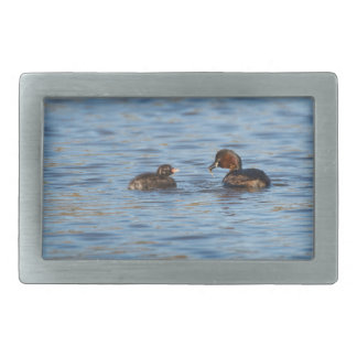 Little Grebe and Chick Belt Buckles