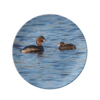Little Grebe and Chick Plate