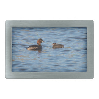 Little Grebe and Chick Rectangular Belt Buckle