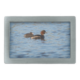 Little Grebe and Chick Rectangular Belt Buckles