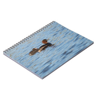 Little Grebe and Chick Spiral Notebook