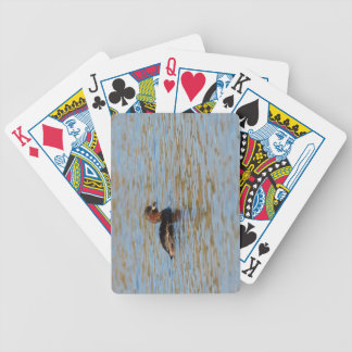 Little Grebe Bicycle Playing Cards