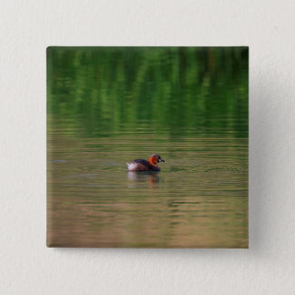 Little grebe duck in breeding plumage 2 inch square button