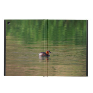 Little grebe duck in breeding plumage case for iPad air