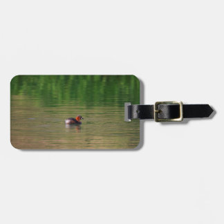 Little grebe duck in breeding plumage luggage tag