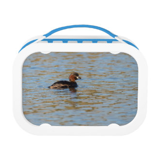 Little Grebe Lunch Box