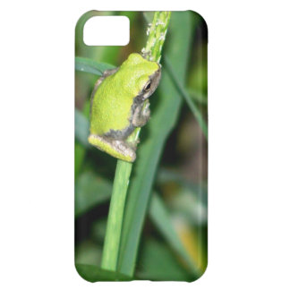 Little Green Frog Case For iPhone 5C