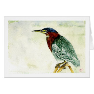Little Green Heron Card