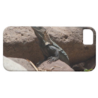 Little Iguana on the Rocks; No Text Case For The iPhone 5