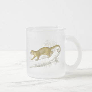 Little kinkajou honey bear pet vintage drawing frosted glass coffee mug