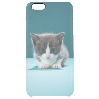 Little Kitten Clear iPhone 6 Plus Case