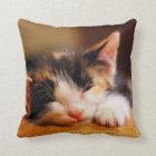 Little Kitty Sleeping Throw Pillow