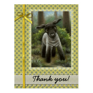 Little lamb in the woods postcard