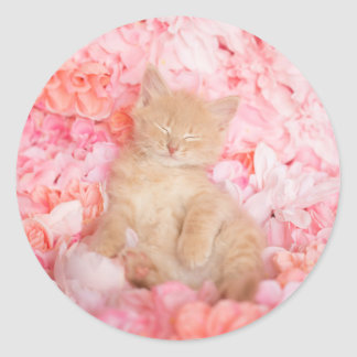 Little Linus Pink Floral Classic Round Sticker