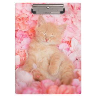 Little Linus Pink Floral Clipboard