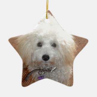 Little Miss Pretty Poodle Ceramic Star Ornament