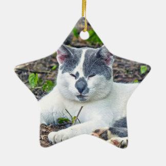 Little Mister Pants Ceramic Star Ornament