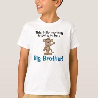 Little Monkey Big Brother Tshirt