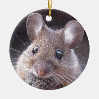 Little Mouse Ornament