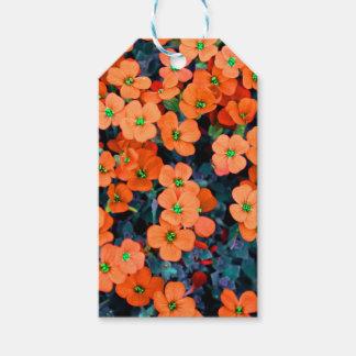 Little Orange Flowers Gift Tags