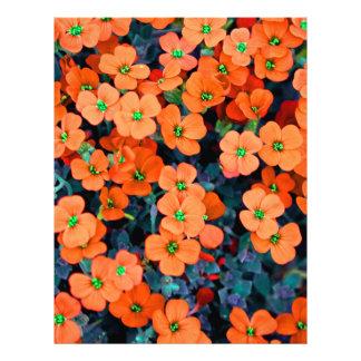 Little Orange Flowers Letterhead