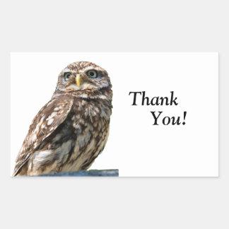 Little Owl bird thank you sticker, stickers