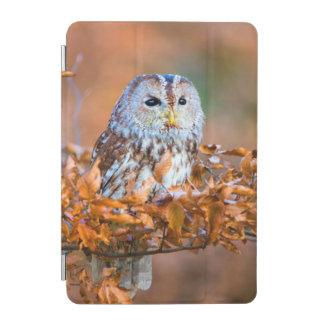 Little Owl iPad Mini Cover
