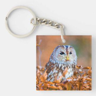 Little Owl Keychain