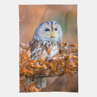 Little Owl Kitchen Towel