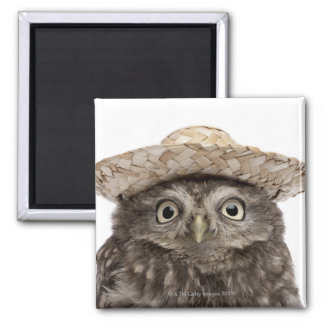 Little Owl wearing a straw hat - Athene noctua Magnet