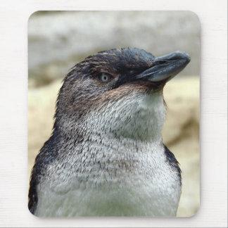 Little Penguin Mouse Pad