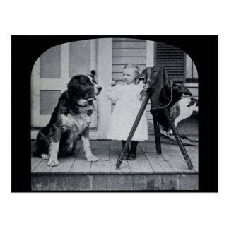Little Photographer and Her St. Bernard Vintage Postcard