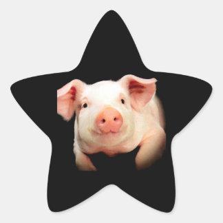 Little Piggy Star Sticker