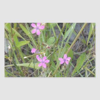 Little Pink Wildflowers Sticker