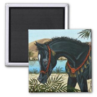 Little Prince Arabian horse foal magnet